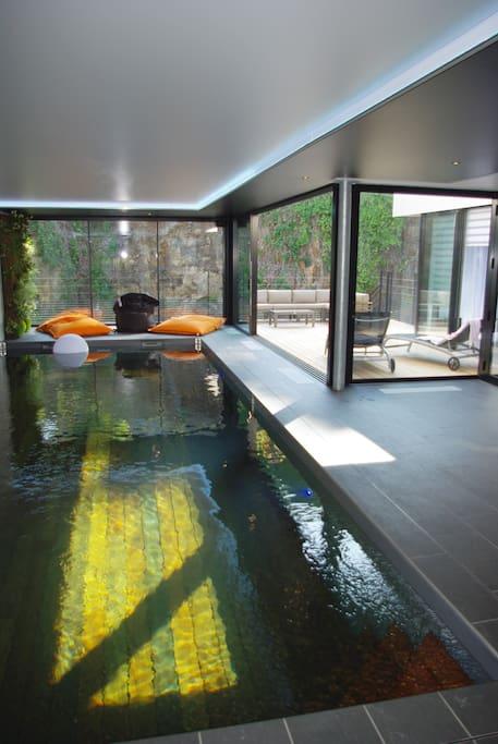 spa : piscine & jacuzzi