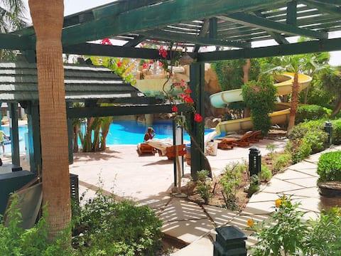Uusi tarjous Delta Sharmissa uima-allasnäkymällä