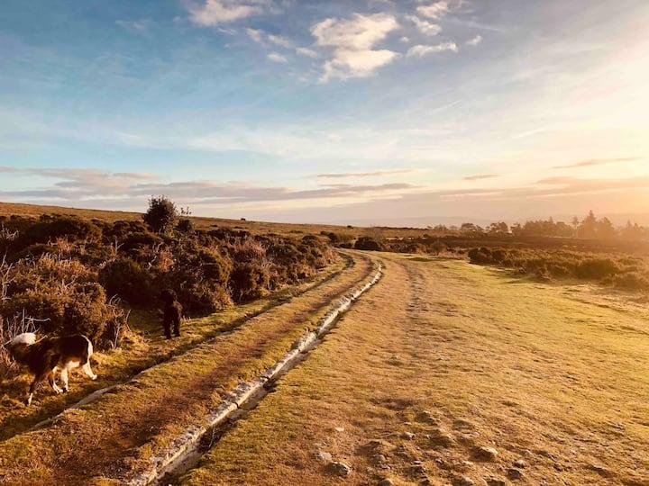The Studio - perfect for walking on Dartmoor