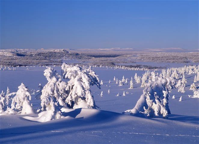 Hafjell - ski in/ski out