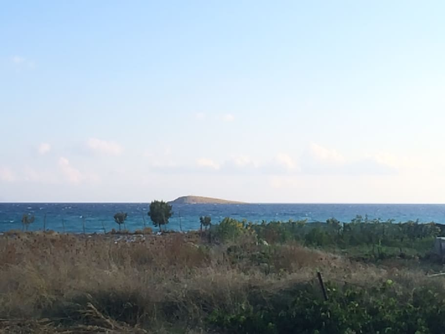 the view in front of the house, sea - beach is on 50 meters.