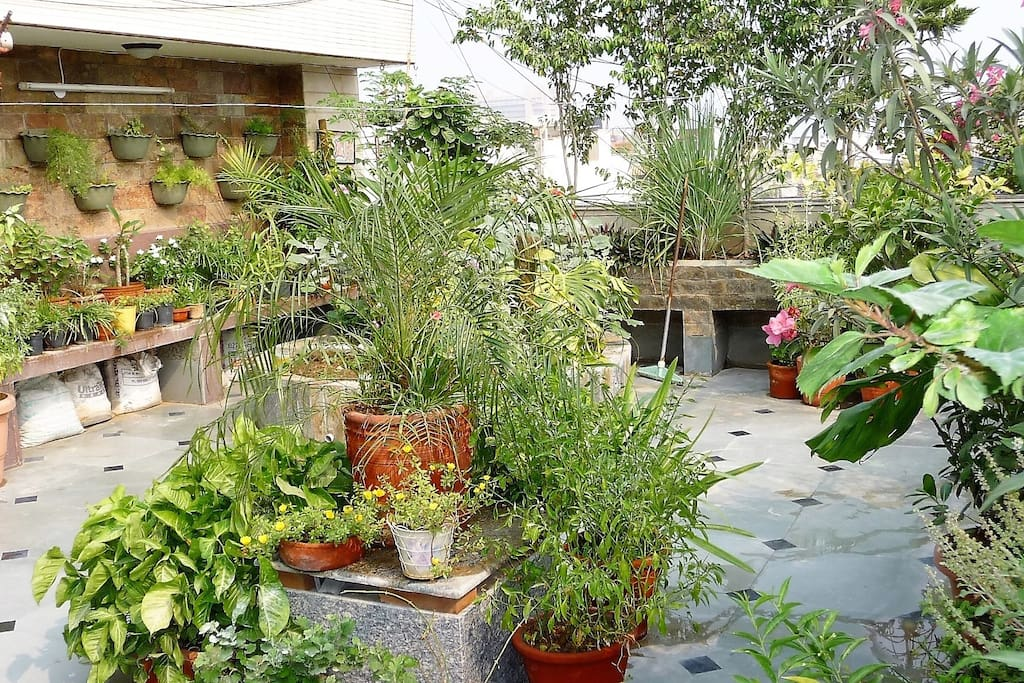 Private terrace garden studio w kitchen bath for Terrace kitchen garden india