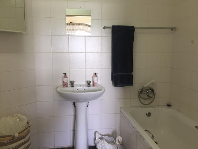 Bathroom Attached to Bedroom 1