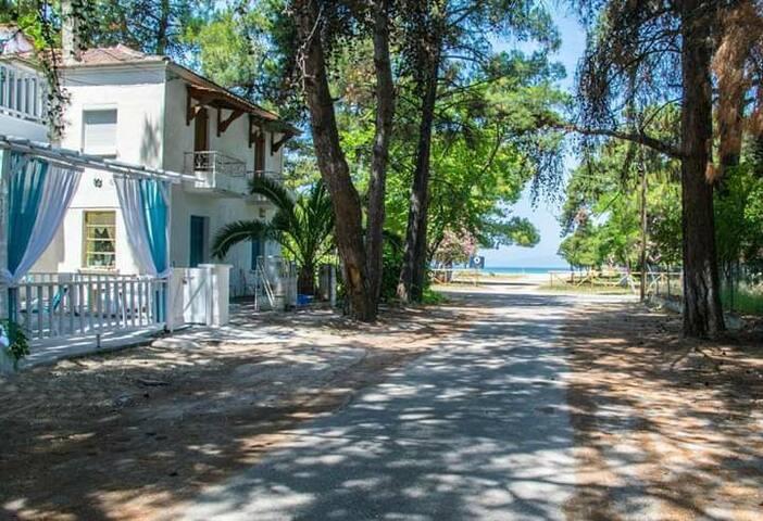 Gilda beach house - on the beach - scala prinos