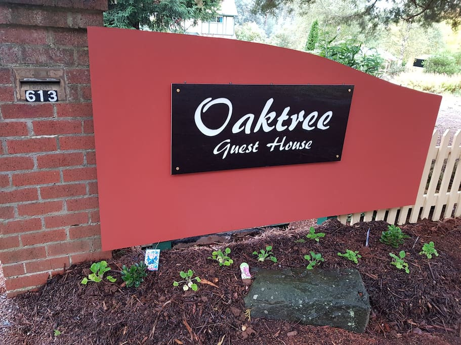 Entrance to Oaktree Guesthouse.