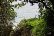 Vista Alta stunning walk ways to the beach