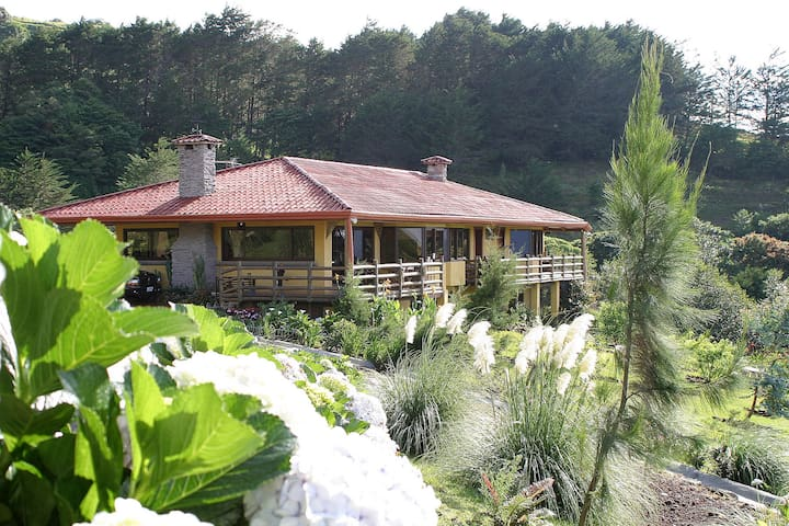 Central Valley Rainforest House - San Isidro - Talo