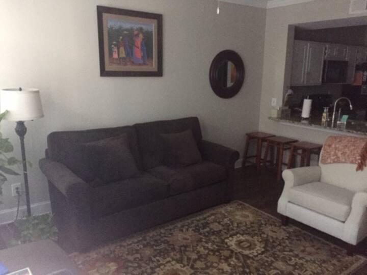 Comfy One Bedroom near Buckhead & Midtown