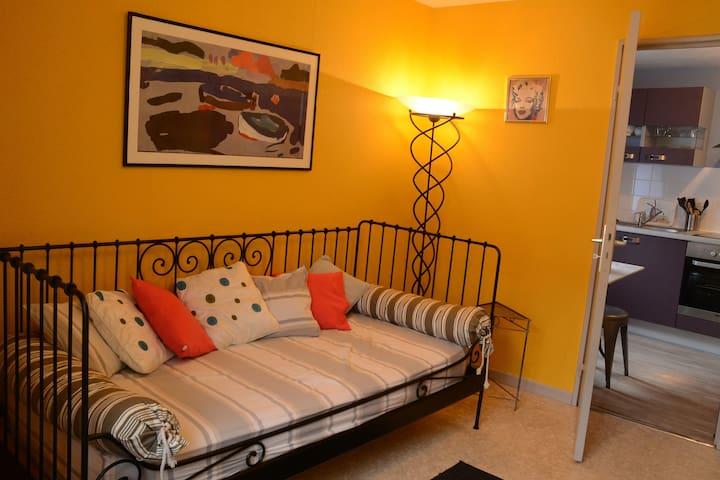 APPARTEMENT CENTRE 2 à 3 personnes - Colmar - Apartament