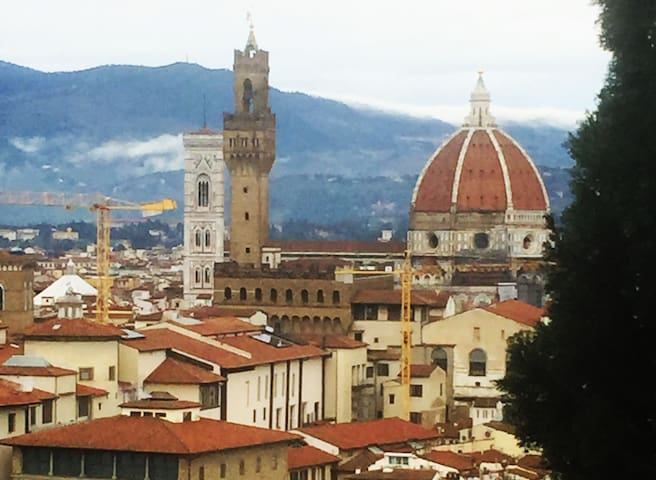 ELEGANT APARTMENT WITH A VIEW ON FLORENCE