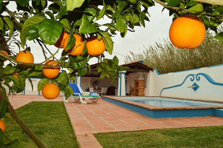 Maison avec piscine privée 600m océan wifi