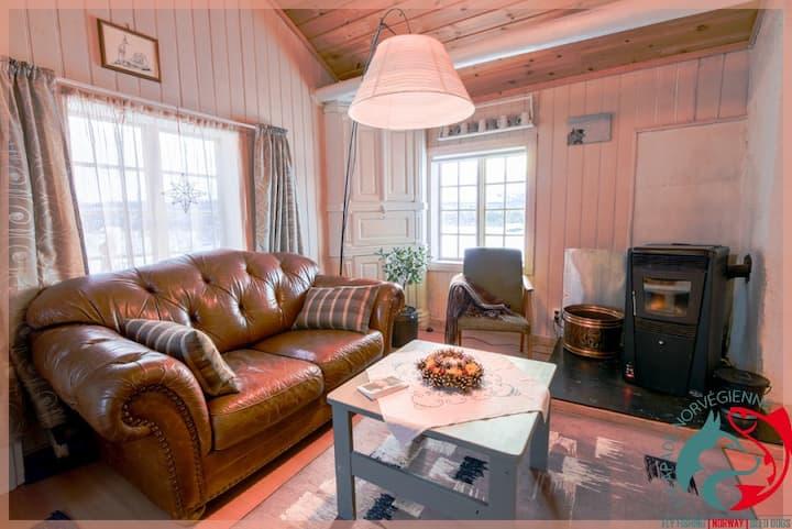 Norwegian cabin with mountain view