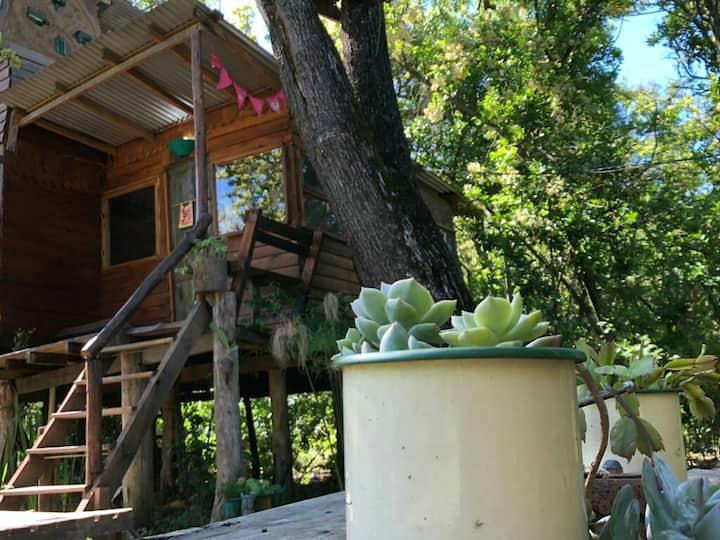 Cabaña Ecologica La Verdad vive la magia del delta