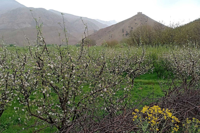 une vue panoramique sur la vallée des Ait bougmez