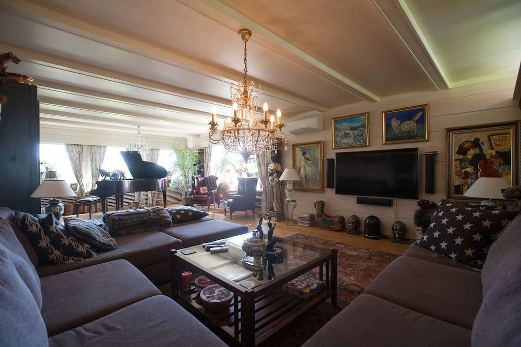 Large living room with room for lots of guests
