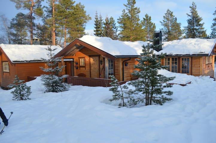 Koselig hytte i hjertet av Sunnmøre - Ørsta - Hytte