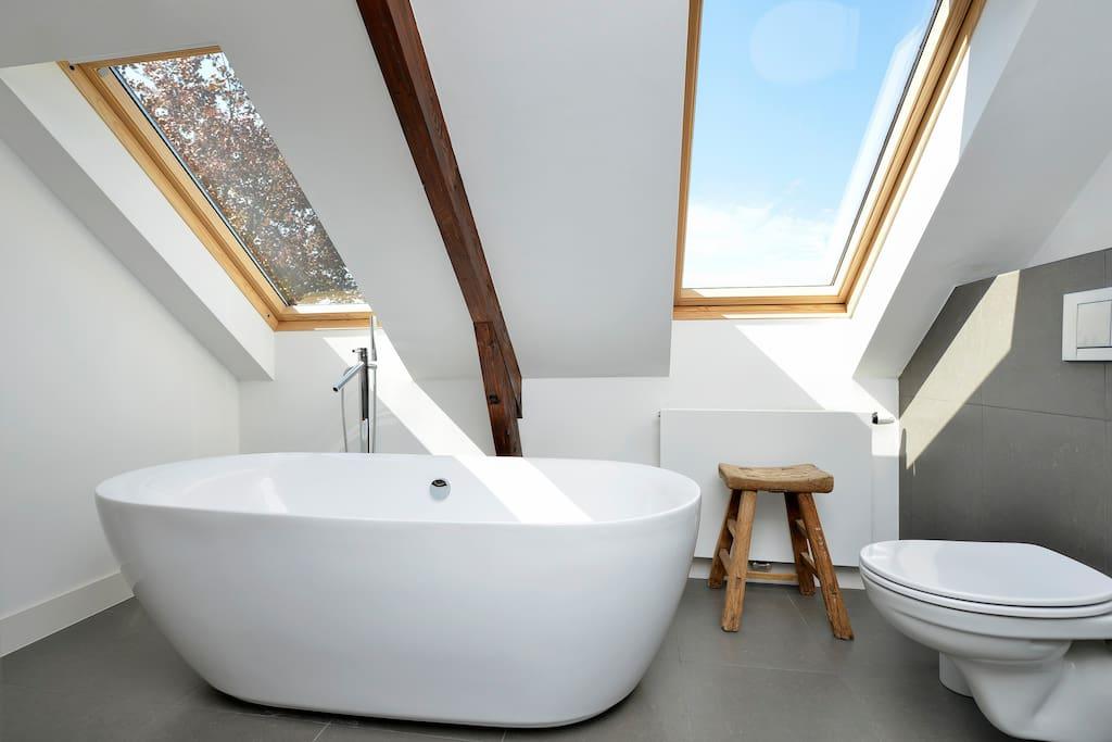Badkamer op de tweede etage met ruime douche, ligbad, infra rood sauna en toilet.