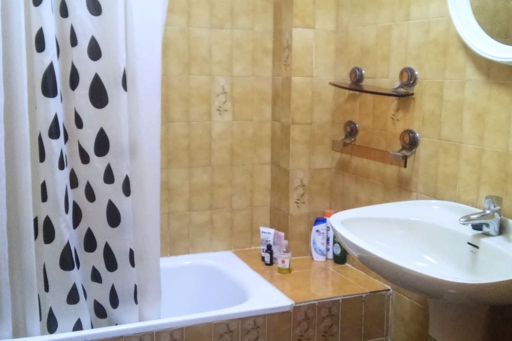 bath with shower and bidet