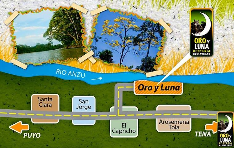 Via Puyo Tena Km 51 junto al rio Anzu , sector el Capricho ,, desde Tena son 29 km y el pasaje de bus cuesta 1,50 usd , si vienes en auto bus te podemos recoger en el Capricho  solo llámanos con anticipación  0992736390