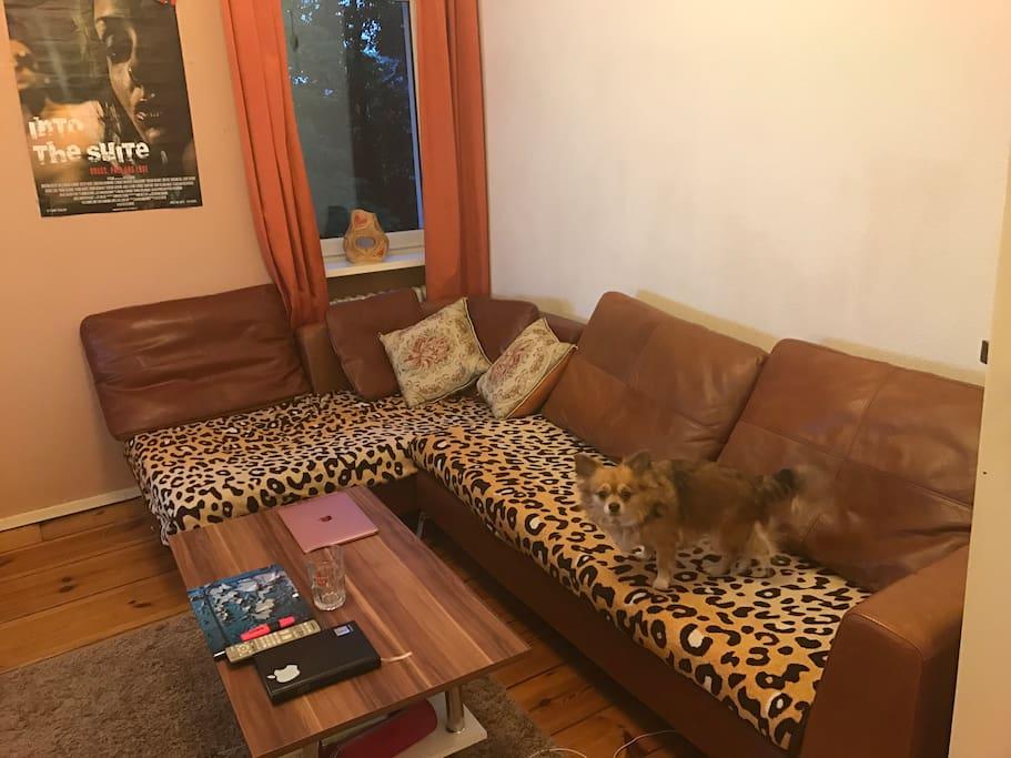 Wohnzimmer & Wuffi