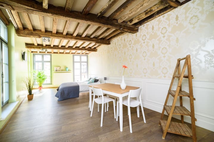 Bright apartment in historic townhouse - Gent - Apartment