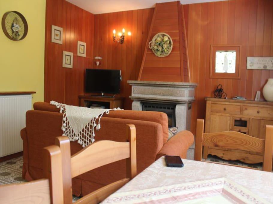 Salone con divano letto 2 posti e camino