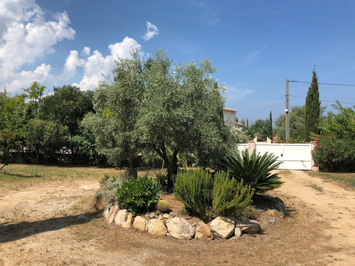 Studio avec mezzanine à Calenzana (Proche Calvi)