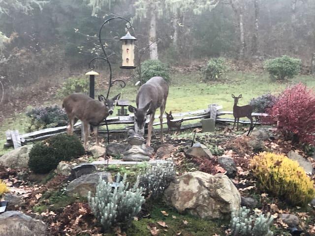 MerryOtt's Deer Haven--Near Spirit MntCasino