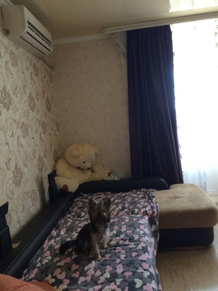 Квартира с прекрасным видом в городе Bataysk
