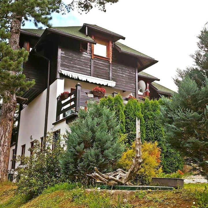 Apartment Ethno - Villa Jelena Tara