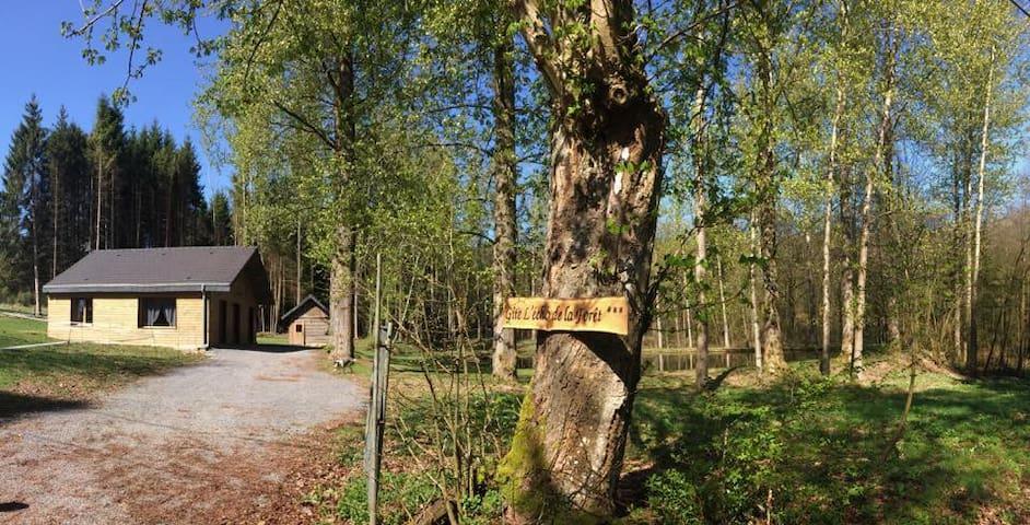 Gîte l'Echo de la Forêt 6 - 8 personnes
