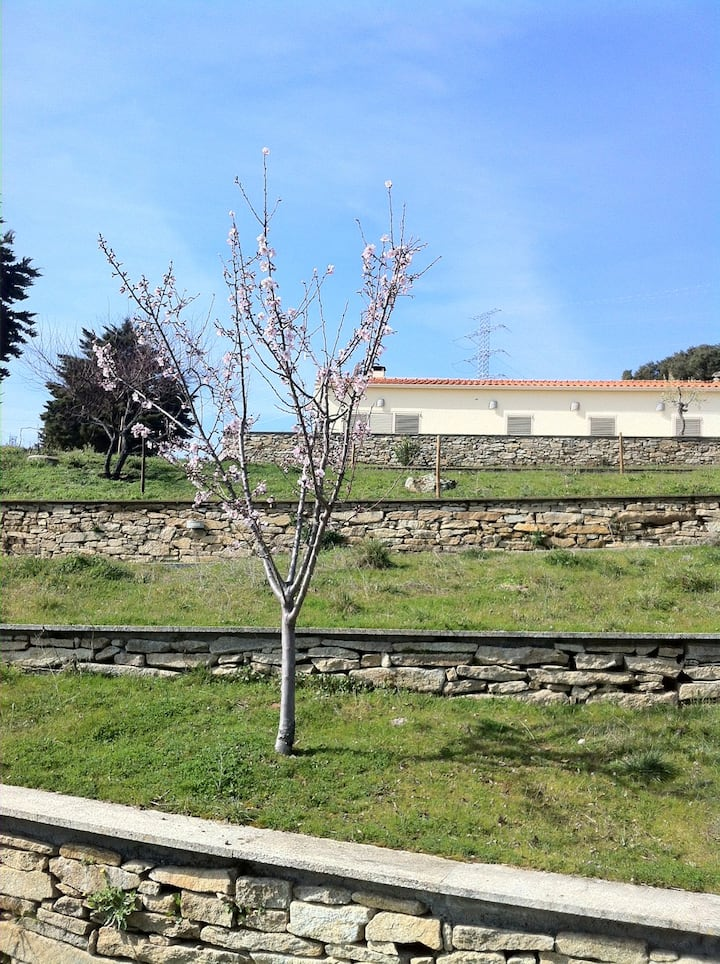 House 4 rooms douro river