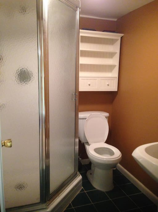 Private bathroom with shower stall