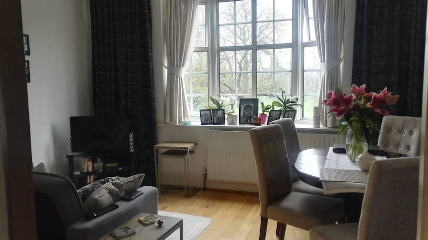 Lovely cosy flat in the heart of Chiswick