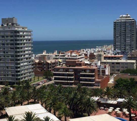 Vista desde living y terraza