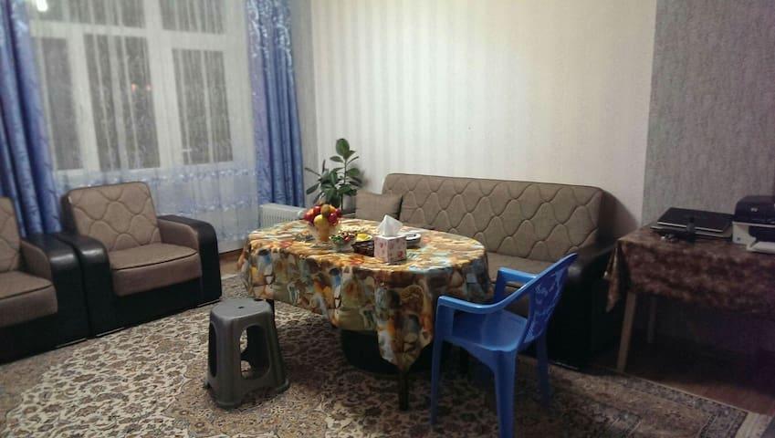 Wifi, Bathroom, Bedroom, Kitchen - Bakı - Appartement