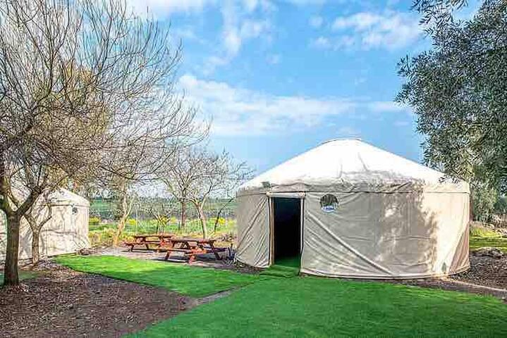 Mongolian Small yurt