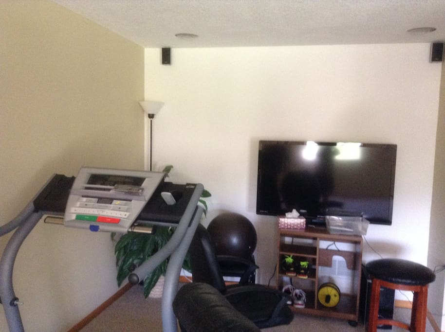 Access to small gym and TV in basement