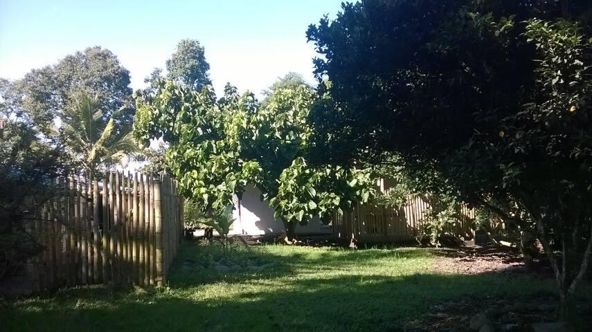 El alojamiento esta rodeado de arboles frutales