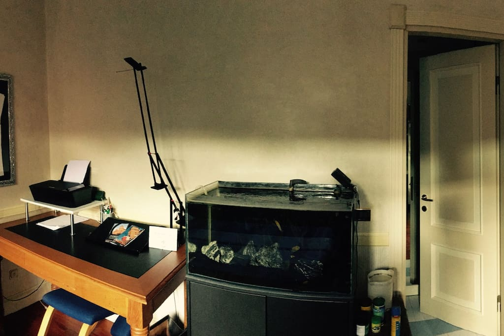 Desk and the aquarium