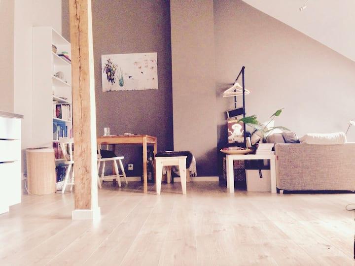 Penthouse apartement - St.hanshaugen