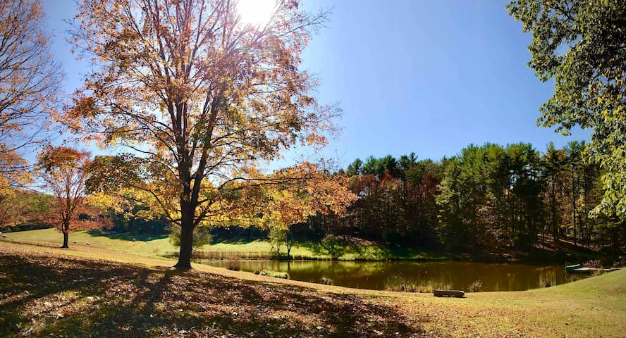 Fall view of upper pond from Pond View Paradise lawn