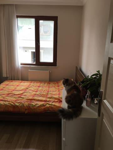 Private Room & Wi-Fi