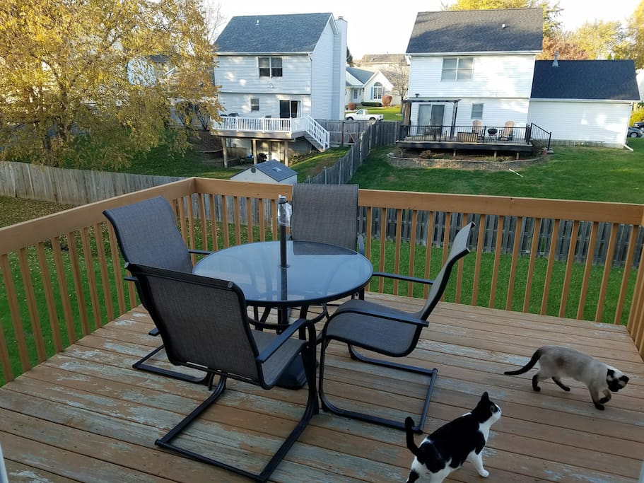 Elevated Deck w/ table and chairs