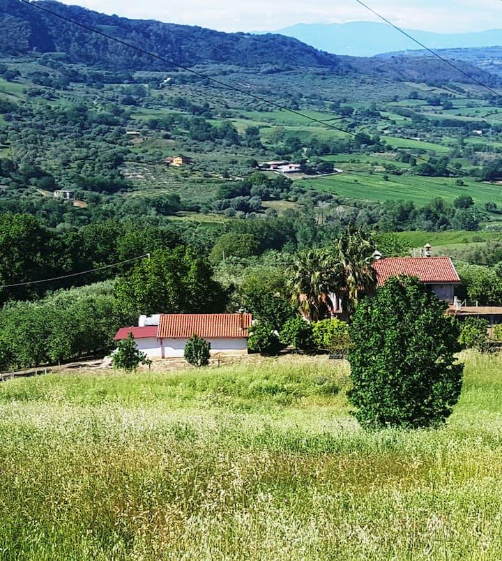 Casa Immersa nella natura a Maierato