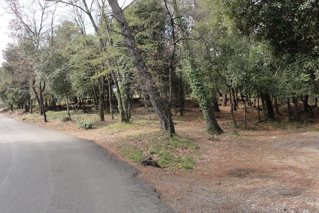 La campagne a proximité pour de jolie promenade à pieds