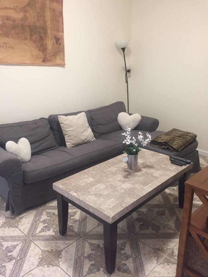 Large 1 Bedroom in Astoria/Long Island City!
