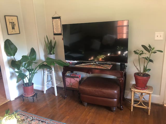 TV in living room