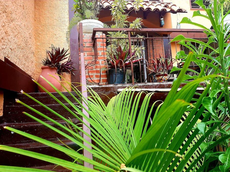 L'entrée de l'appartement est vraiment privé et totalement indépendant. L'environnement est charmant et verdoyant.