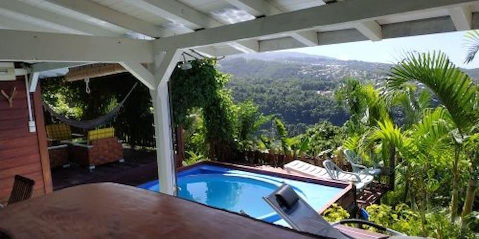 Eco-villa piscinette vue sur la réserve Cousteau